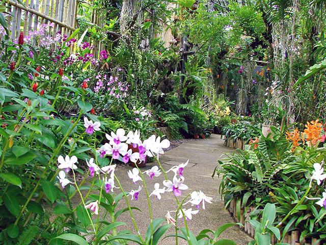 Botanik Bahçe Nemlendirici
